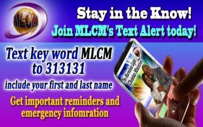 Marvelous Light Text Alert